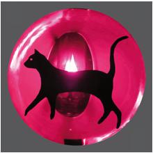 Katze1_RGB